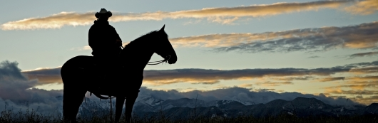 Oklahoma_Cowboy.jpg