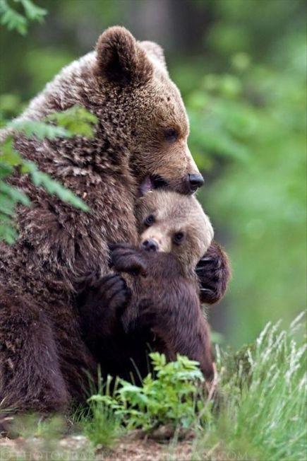 hugging mum